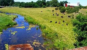 Fred Meijer Heartland Trail | Michigan Trails | TrailLink