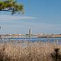 Gordons Pond Trail - Cape Henlopen State Park